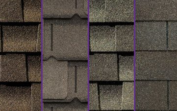 Shingles Options
