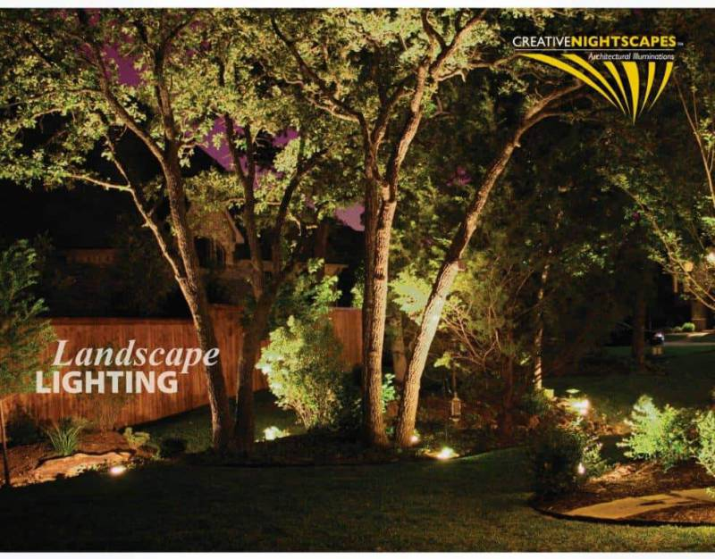 Landscaping features illuminated by bright outdoor lights