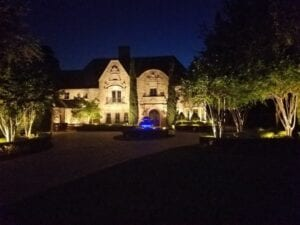 landscape lighting for trees and bushes