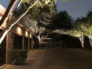 lights outside to light up a driveway