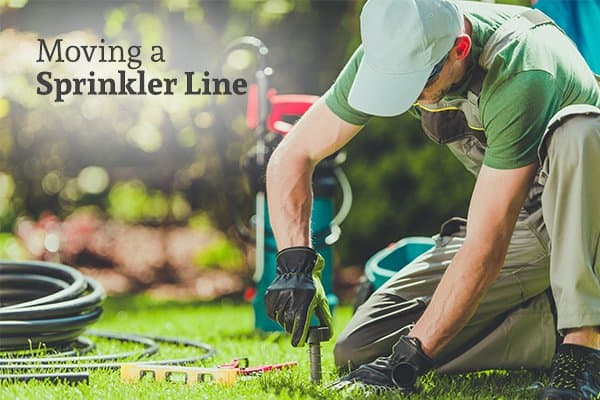 A man adjusting the placement of sprinkler lines in a yard with the words moving a sprinkler line