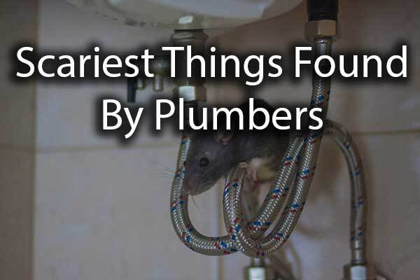 "A mouse with the words, ""scariest things found by plumbers."""