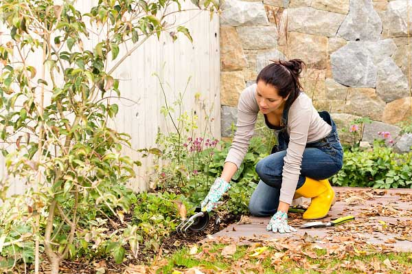 Young woman tending to her backyard flowerbed in autumn