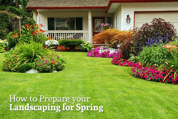 """A well tended-to lawn with grass, bushes, and flowers with the words """"How to Prepare your Landscaping for Spring"""""""