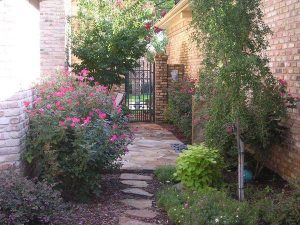 stone pathways to a stone patio with rose bushes