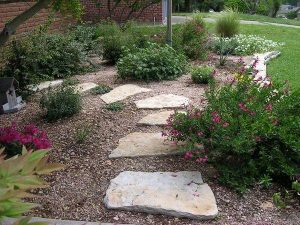 stone pathway through a little garden
