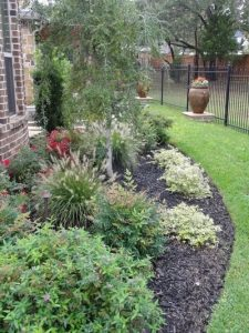 landscaping bed full of trees and shrubs