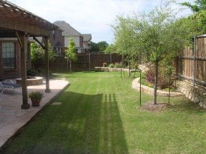 nicely done backyard with new landscaping