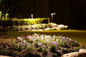 flower bed with lights