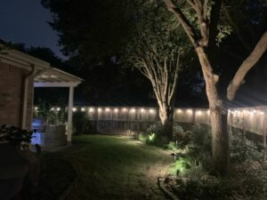 cute little backyard with two trees lit up