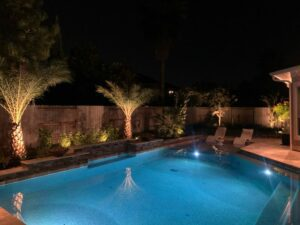 pool with palm trees lit up