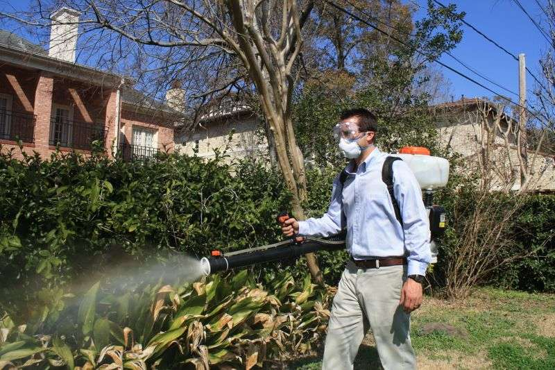 zika mosquito control houston