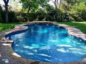 freeform pool with beautiful blue water