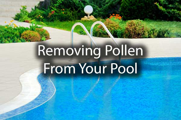 A gorgeous shot of a pool with the words, removing pollen from your pool.