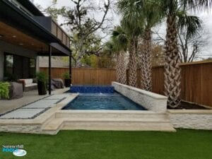 small pool with blue tile raised spa and palm trees